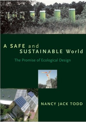 A Safe and Sustainable World The Promise of Ecological Design cover