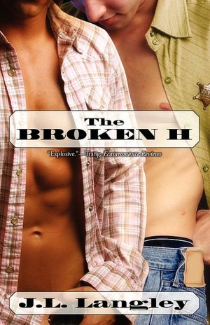 Two gay cowboys fall in love. And they have lots and lots and lots and lots ...