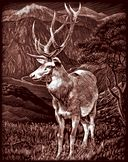 Copperfoil Kit 8&quot;X10&quot;-Elk by Reeves: Product Image