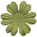 Bazzill Paper Flowers-Parakeet Primula 1.5&quot; 10/Pkg by Bazzill: Product Image