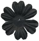 Bazzill Paper Flowers-Raven Primula 1.5&quot; 10/Pkg by Bazzill: Product Image