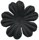 Bazzill Paper Flowers-Raven Primula 1&quot; 10/Pkg by Bazzill: Product Image
