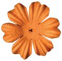 Bazzill Paper Flowers-Creamsicle Primula 1.5&quot; 10/Pkg by Bazzill: Product Image