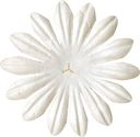 Bazzill Paper Flowers-White Daisy 2&quot; 10/Pkg by Bazzill: Product Image
