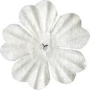 Bazzill Paper Flowers-White Primula 1.5&quot; 10/Pkg by Bazzill: Product Image