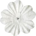 Bazzill Paper Flowers-White Primula 1&quot; 10/Pkg by Bazzill: Product Image