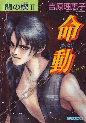 Forum ebook downloads Ai No Kusabi the Space Between, Volume 2: Destiny (Yaoi Novel) FB2 CHM