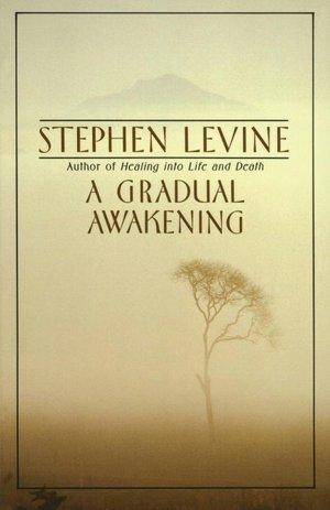Ebook for cat preparation pdf free download A Gradual Awakening (English literature) by Stephen Levine 9780385262187 FB2