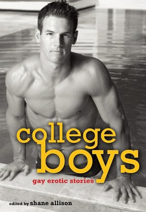 BARNES & NOBLE | Hard Working Men: Gay Erotic Fiction by Shane Allison, ...