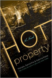 Hot Property by Michele Kleier: Book Cover