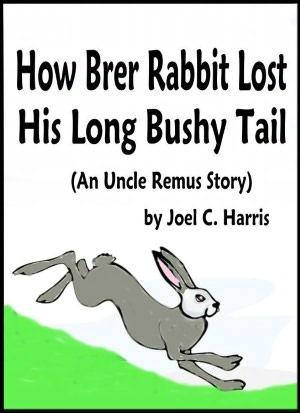 brer rabbit report