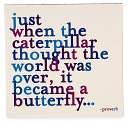 Magnet - Just When The Caterpillar Thought The World Was Over, It Became A Butterfly by Quotable Cards: Product Image