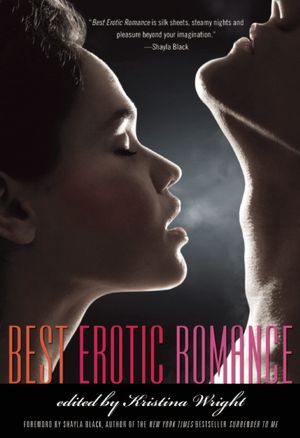 This summer I read several erotic novels/stories, and if there was ever a ...