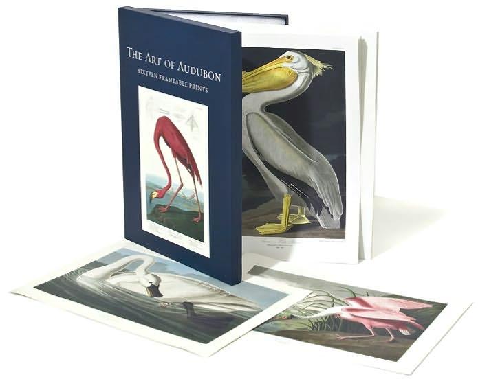 Art of Audubon: Sixteen Reframable Prints