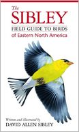 The Sibley Field Guide to Birds of Eastern North America by David Allen Sibley: Book Cover