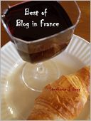 Best of Blog in France by Stephanie Dagg: NOOK Book Cover