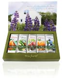 Herbal Retreat Single Steeps Sampler by Tea Forte: Product Image