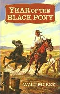 Year of the Black Pony by Walt Morey: Book Cover