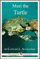 Meet the Turtle by Caitlind Alexander: NOOK Book Cover