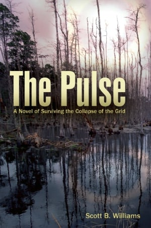 Free download ebooks for pc The Pulse: A Novel of Surviving the Collapse of the Grid by Scott B. Williams 9781612430546 iBook MOBI (English literature)