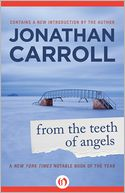 From the Teeth of Angels by Jonathan Carroll: NOOK Book Cover