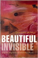 The Beautiful Invisible by Giovanni Vignale: Book Cover