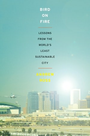 Bird on Fire Lessons from the World's Least Sustainable City cover