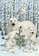 Bywaters Animals and Birch Trees Christmas Boxed Card by Sunrise Greetings: Product Image