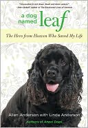 A Dog Named Leaf by Allen Anderson: NOOK Book Cover