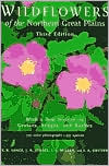 download Design in the Plant Collector's Garden : From Chaos to Beauty book