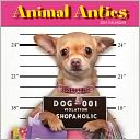 2014 Animal Antics Wall Calendar by John Lund: Calendar Cover