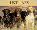 2014 Labs Wall Calendar by Willow Creek Press, Incorporated: Calendar Cover