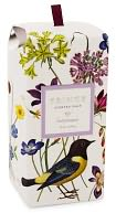 Hummingbird Meadow Decorative Scented Bath Soap In Box by Fringe: Product Image