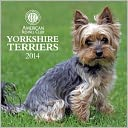 2014 AKC Yorkshire Terriers Wall Calendar by American Kennel Club: Calendar Cover