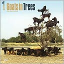 2014 Goats in Trees Square 12x12 by BrownTrout Publishers: Calendar Cover