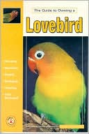 guide to owning a lovebird
