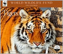 2014 Tigers WWF Wall Calendar by Calendar Ink: Calendar Cover
