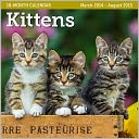 2015 Mid Year Kittens 18M Mar 2014-Aug 2015 Wall Calendar by Ziga Media: Calendar Cover