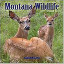 2015 Montana Wildlife Wall Calendar by Donald Jones: Calendar Cover