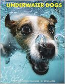 2015 Underwater Dogs Engagement Calendar by Seth Willow Creek Press, Incorporated: Calendar Cover
