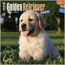 Golden Retriever Puppies Calendar by Inc Browntrout Publishers: Calendar Cover