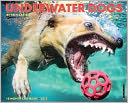 2015 Underwater Dogs Wall Calendar by Willow Creek Press, Incorporated: Calendar Cover