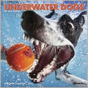 2015 Underwater Dogs Mini Wall Calendar by Willow Creek Press, Incorporated: Calendar Cover