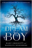 Dream Boy by Madelyn Rosenberg: Book Cover