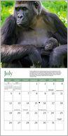 2015 Mini WWF Land Calendar by Ziga Media: Calendar Cover