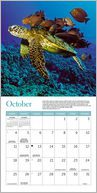 2015 Mini WWF Water Calendar by Ziga Media: Calendar Cover
