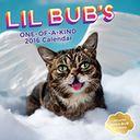 Lil Bub 2016 Wall Calendar by Lil Bub: Calendar Cover