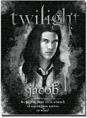 Twilight Jacob 1000 piece Puzzle by NECA: Product Image
