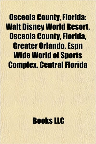 walt disney world resort in florida. Osceola County, Florida: Walt Disney World Resort