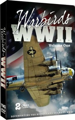 Warbirds Of Wwii 1 (2 Pack)